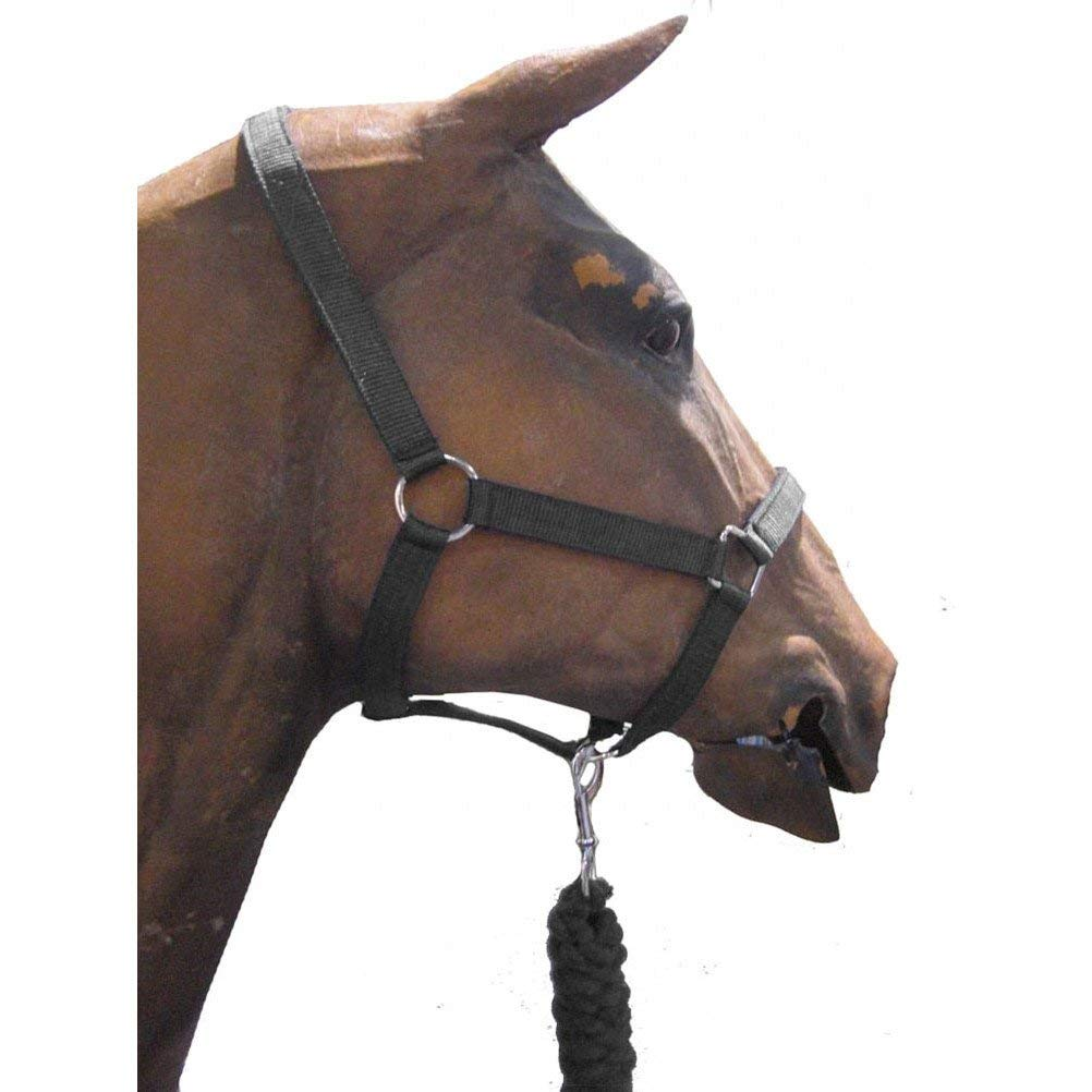 Roma Headcollar and Leadrope Set Black Full