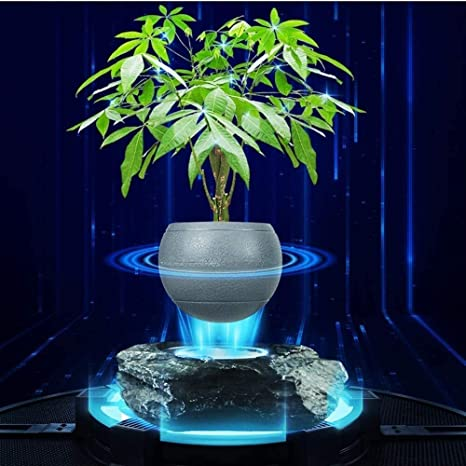 Amazon Com Portable Levitating Potted Floating Pot Air Bonsai Magnetic Suspension Plant Creative Design Levitation Bonsai Home Office Decorations Fun Gift Black Color Gray Size S Kitchen Dining