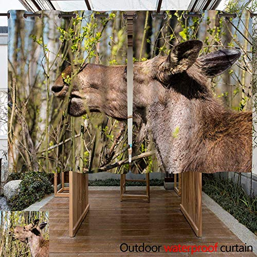 Chair Outdoor Alder (WinfreyDecor Home Patio Outdoor Curtain an Ornamental Moose in The Alder W55 x L72)