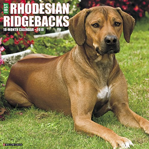 Just Rhodesian Ridgebacks 2018 Wall Calendar (Dog Breed Calendar)