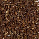 Harmony House Foods, Dehydrated Pinto Beans (25 lb Bulk Box)