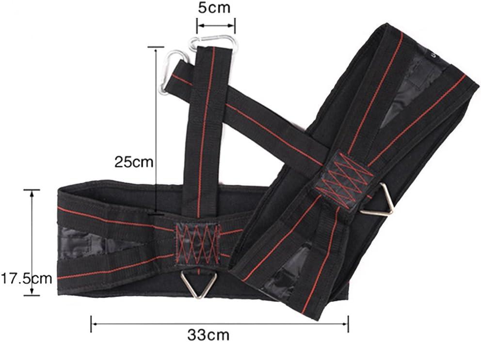 HemeraPhit Arm Hanging Ab Belt Abdominal Training Straps Pull Up Sling Crossfit Training Equipment, 1PAIR