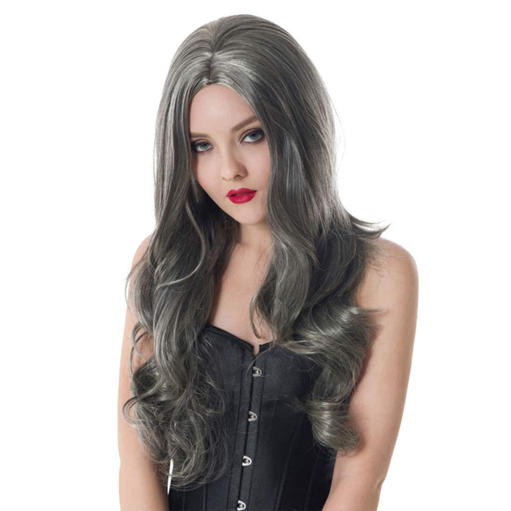 DDLmax Long Wavy Wigs for Women Gray Synthetic Hair Wigs with Middle Part Natural Looking Replacement Hair Wigs Heat Resistant Fiber Hair Wigs 24 Inches by DDLmax