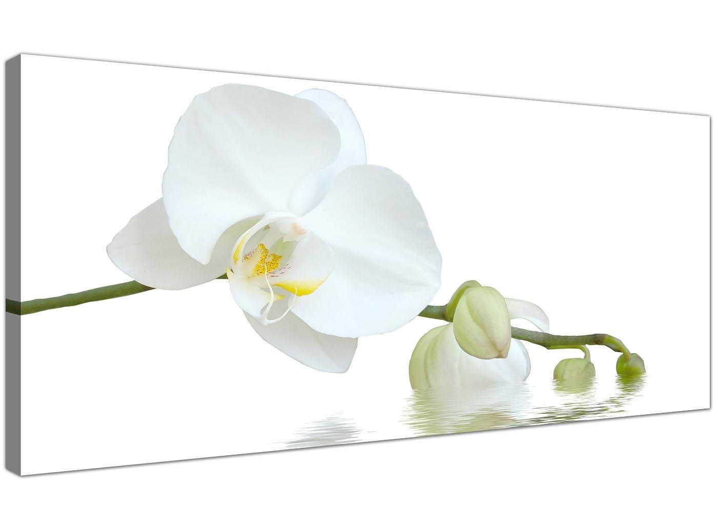 Wallfillers Modernes Leinwand Prints of weiß Orchideen für Ihr Wohnzimmer–breit floral Art Wand–1134
