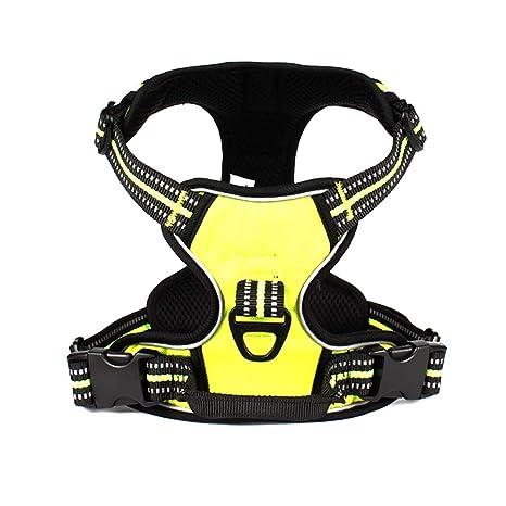 YLLYLL Juego de Cinturones de Seguridad for arneses de Coche for ...
