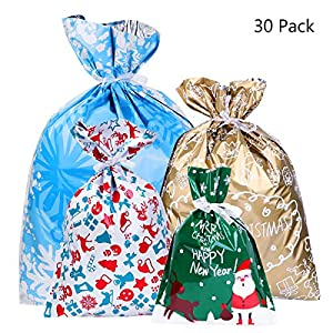 BESTOYARD 30PCS Christmas Gift Bag Christmas Goody Bags Gift Wrapping Assorted Styles with 30pcs Ribbon Ties