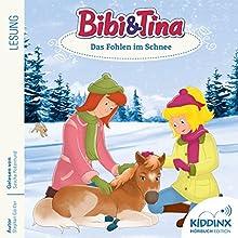 Das Fohlen im Schnee (Bibi und Tina) Hörbuch von Stephan Gürtler Gesprochen von: Sascha Rotermund