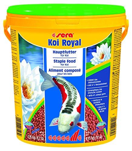 Sera 7130 koi royal large for Koi warehouse sale