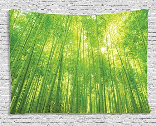 - Ambesonne Green Tapestry Zen Decorations, Image of Bamboo Trees with Sunlight in Rainforest Exotic Wildlife Plants Nature Decor, Wall Hanging Art for Bedroom Living Room Dorm, 80 W X 60 L, Green