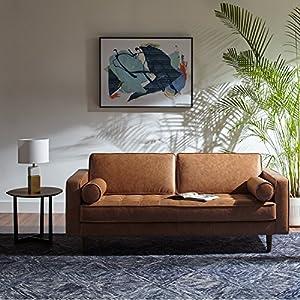 Rivet Aiden Mid-Century Modern Tufted Loveseat Sofa 3