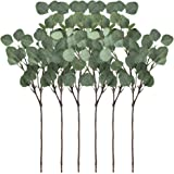 """Supla 6 Pcs Artificial Silver Dollar Eucalyptus Leaf Spray in Green 25.5"""" Tall Artificial Greenery Holiday Greens Christmas greenery"""