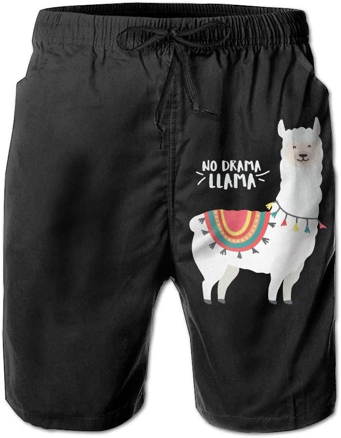 Llama Mens Fashion Beach Shorts Slim-Fit Bathing Suit with Pockets No Prob