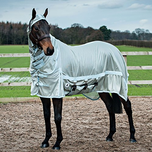 Derby House Pro Fly Rug 6ft9 Whispering (0070 Rug)