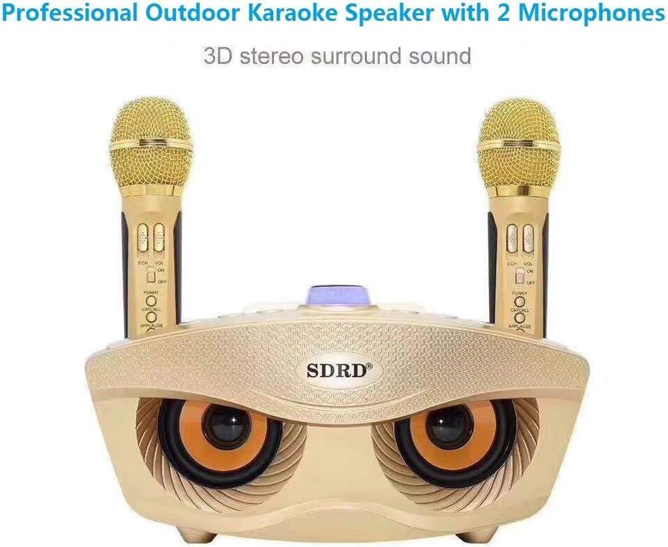 SD 306 Profesional Wireless Micrófono dual Bluetooth Altavoz Inalámbrico Karaoke al aire libre 20W Negro Altavoz estéreo SDRD Soporte Android IOS (Rosado)