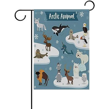 amazon com cartoon cute arctic animals seal fox penguin moose bear