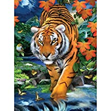 "Royal Brush 8.75"" X 11.75"" Junior Paint by Number Kit, Small, ""On The Prowl"""