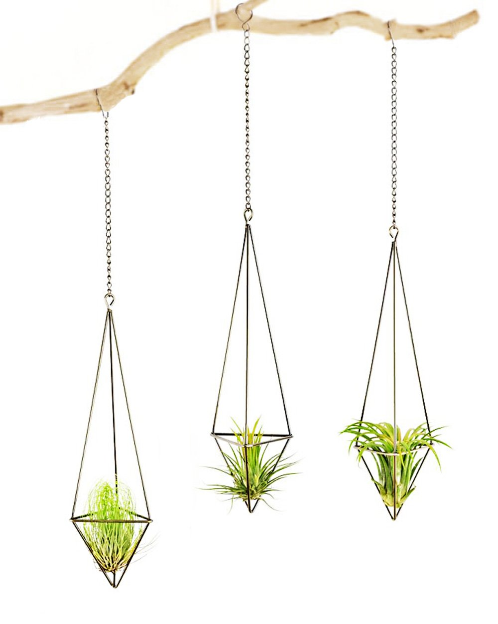 Mkono 3 Pack Hanging Air Plant Holder Himmeli for Tillandsia Airplants Display (with Chains), Bronze