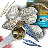 Amazing Owl Pellet Dissection Kit – 6-Piece Owl Pellet Set for Science Lab Projects – w/Tweezers, Magnifying Glass and Wooden Probes – Ideal for Kids, Class Projects – Bonus Barn Owl eBook