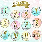 Baby Monthly Milestone Stickers-(Set of 24) Premium Metallic Gold Floral Stickers for Newborn Girl First Year-Best Baby Shower Registry gift or Scrapbook Photo Memory Keepsake (Multi A)