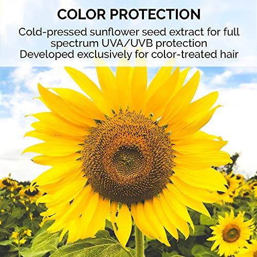ColorProof TextureCharge Color Protect Texture + Finishing Spray, 6.7 Oz - Color-Safe, Vegan, Sulfate-Free, Unisex - Professional Hair Product 5