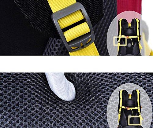 HWLXBB Outdoor Bergsteigen Paket 45L Anti-Spritzwasser Wasser Reise Unterkunft Rucksack Männer und Frauen Wandern Bergsteigen Tasche ( Farbe : 3* )