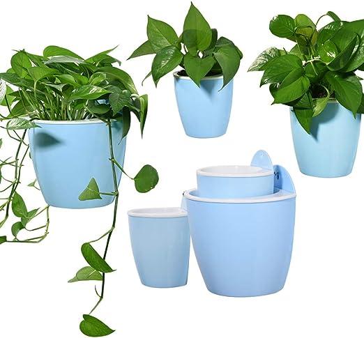 Sungmor - 3 macetas colgantes para jardín creativas y de plástico, opción de regado automático, para montaje en pared, colgador de plantas con función de largo almacenamiento de agua: Amazon.es: Jardín