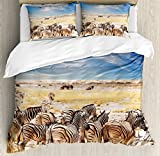 Wildlife Decor Duvet Cover Set by Ambesonne, Zebras in Savannah Desert Waterhole on Hot Day Africa Safari Adventure Land Print, 3 Piece Bedding Set with Pillow Shams, Queen / Full, Multi
