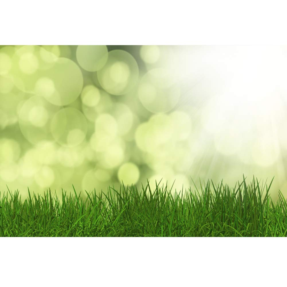 Cassisy 2,2x1,5m Vinilo Primavera Telon de Fondo Jard/ín de Cuento de Hadas Bloom Cherry Blossom Trees Mariposa Fondos para Fotografia Party Photo Studio Props Photo Booth