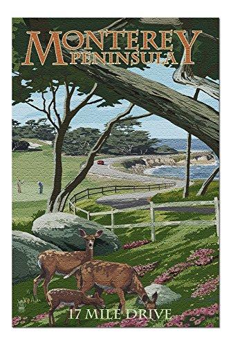 - Monterey Peninsula, California - 17 Mile Drive (20x30 Premium 1000 Piece Jigsaw Puzzle, Made in USA!)