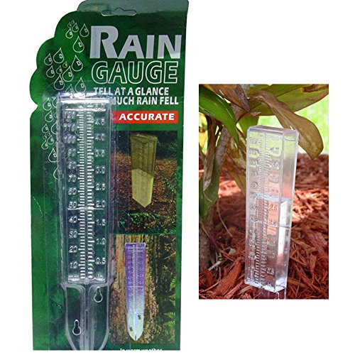 Water Rain Gauge Clear Plastic Weather Garden Accurate Temperature Temp Station BEST - To Dimensions Glasses Read How