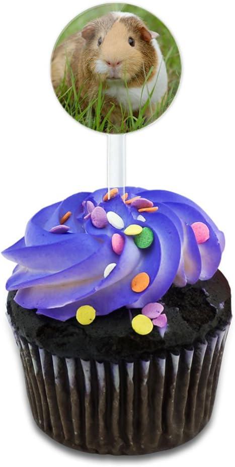 Guinea Pig Cavia Cake Cupcake Toppers Picks Set