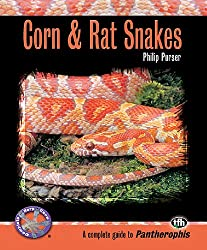 Corn and Rat Snakes (Complete Herp Care)