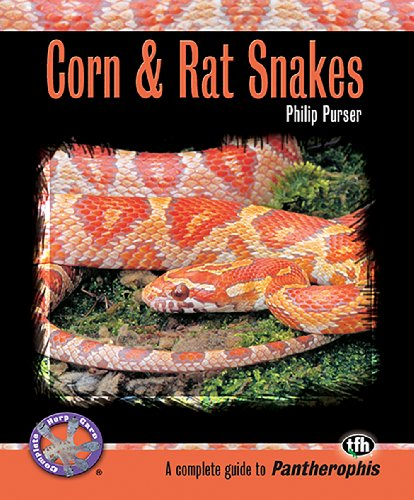 - Corn & Rat Snakes (Complete Herp Care)