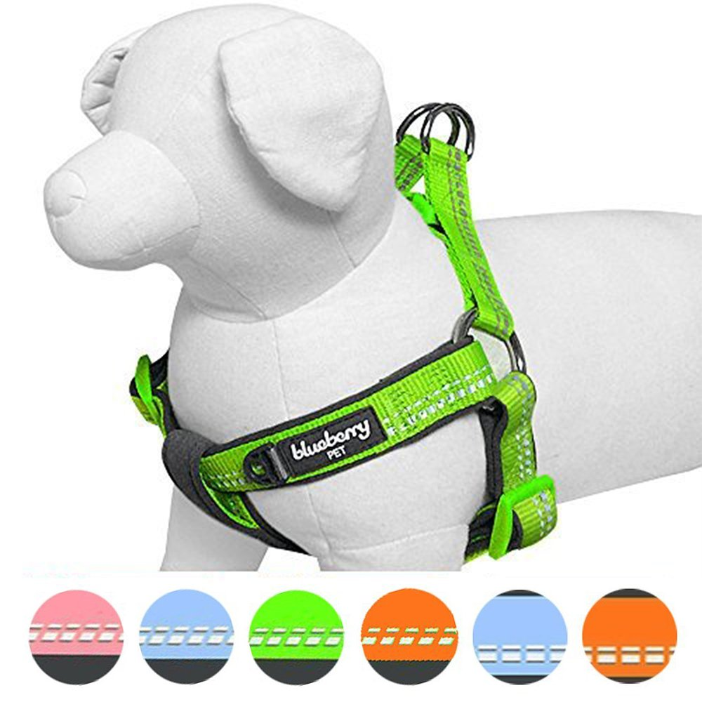 Blueberry Pet 4 Colors Soft & Comfy New 3M Reflective Step-in Pastel Color Padded Dog Harness, Chest Girth 19.5'' - 25.5'', Pastel Green, Medium, Adjustable Harnesses for Dogs