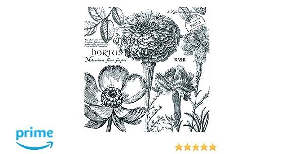 Michel Design Works Guest Towels Hostess Napkins Flower Noir 15 ct