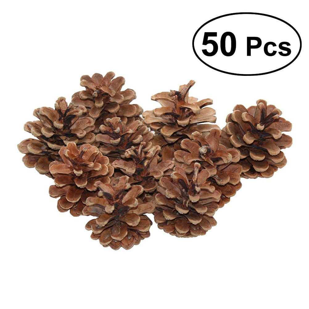 TOYMYTOY 50pcs 6-8cm Christmas Natural Pine Cones Pinecone Tree Decoration Crafts