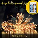Waterproof 40ft/240LEDs with A Dimmer LED String lights,IR Remote Controller Copper Wire lights,Prettiest Starry string lights,Décor Rope Lights For Wedding, Seasonal Decorative Christmas Holiday, Parties, shops Cost effective(Warm white)
