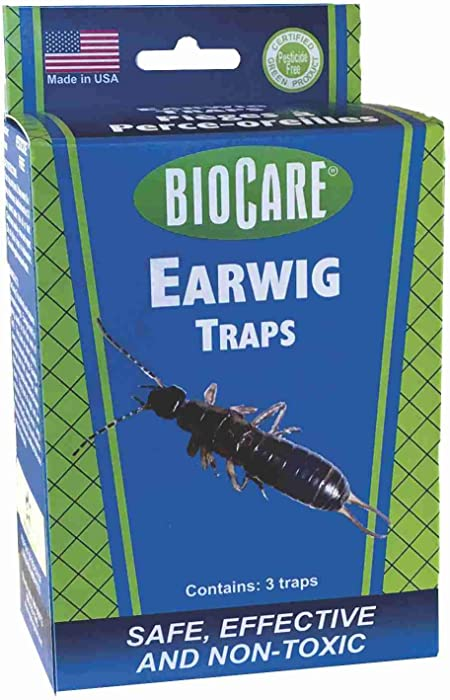 BioCare Reusable Earwig Traps, Nontoxic and Pesticide-Free, Made in USA, 3 Count