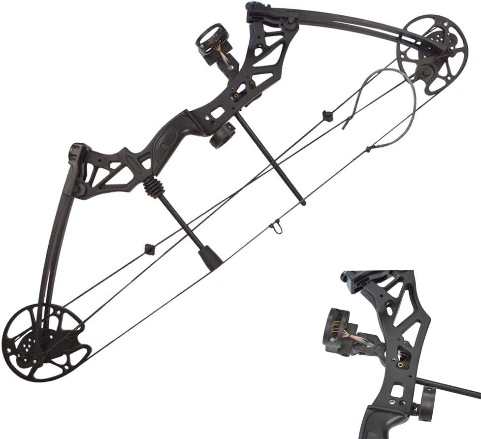 ZSHJG Archery Compound Bow Kit Complete Compound Bow Arrow Package Set 30-70lbs Adjustable Hunting Bow 320FPS Adult Bow with Carbon Arrows (Type1): Amazon.co.uk: Sports & Outdoors