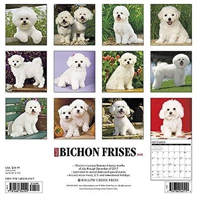Just-Bichons-Frises-2018-Calendar-Calendar–Wall-Calendar-June-26-2017
