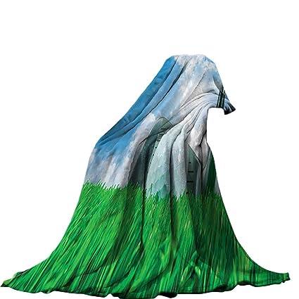 d53a8d0c5b541 Amazon.com: QINYAN-Home Digital Printing Blanket (60