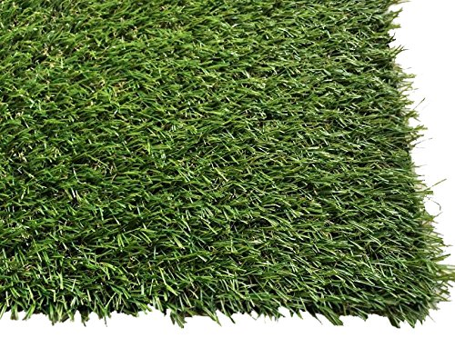 PZG 1-inch Artificial Grass Patch w/ Drainage Holes & Rubber Backing | 4-Tone Realistic Synthetic Grass Mat | Heavy & Soft Pet Turf | Lead-Free Fake Grass for Dogs or Outdoor Decor | Size: 12' x 6' by Pet Zen Garden