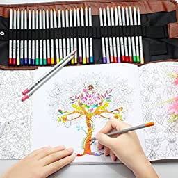 Huhuhero Macro Raffine 72-color Art Drawing Colored Pencils Set for Artist Sketching Drawing Writing Coloring/ Adult Coloring Books/ Secret Garden with Roll up Canvas Pen Wrap Cases