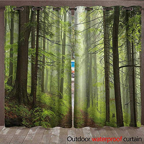 BlountDecor Outdoor Outdoor Blackout Curtain Trail Trough Foggy Alders Beeches Oaks Coniferous Grove Hiking ThemeW120 x L84 Pale Green Pale Yellow