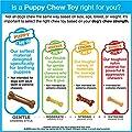 Nylabone Puppy Chew toy, Petite-p
