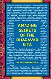 Amazing Secrets of the Bhagavad Gita: A Grandfather and Grandson Discuss Hinduism, Yoga, Reincarnation, and More