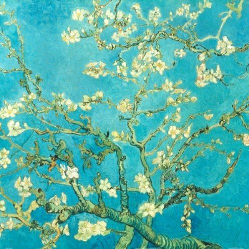 Almond Blossom by Van Gogh Art Print Poster Abstract Floral Blue Background White Flowers