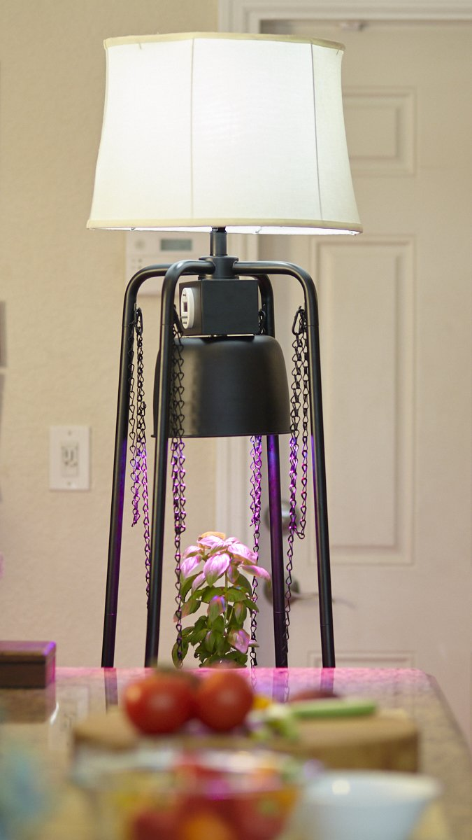 Catalina Lighting Glo Gro 45-Watt LED Grow Light, Étagère Floor Lamp with Adjustable Plant Housing and Integrated Timer, Black, 20745-000 by Catalina Lighting (Image #1)