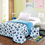 HOMEE Coral Large Armful Pillows Quilt Dual-Use Thick Rest Quilt Air-Conditioning and Cool in the Summer is Cotton Automotive Pillow ,4343, Purple Double Pinyin,Waltz,5353