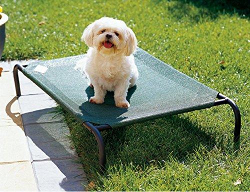 Coolaroo Elevated mascota cama cubierta de repuesto, color verde: Amazon.es: Productos para mascotas